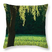 Willow Weeping Throw Pillow
