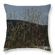 Willows In Snow Throw Pillow