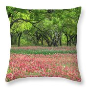 Willows,indian Paintbrush Make For A Colorful Palette. Throw Pillow