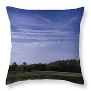Wilmington River Savannah Morning Throw Pillow