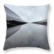 Wilshire River Throw Pillow