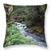 Wilson Creek #14 With Added Cedar Waxwing Throw Pillow