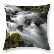 Wilson Creek #15 Throw Pillow