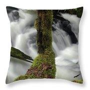 Wilson Creek #17 Throw Pillow