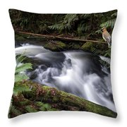 Wilson Creek #18 With Added Cedar Waxwing Throw Pillow