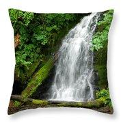 Wilson River Hwy Waterfall Throw Pillow