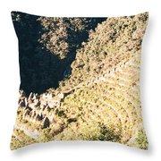 Winay Wayna Throw Pillow