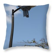 Wind And Solar Powered Light Throw Pillow
