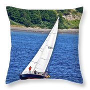Wind Friend Throw Pillow
