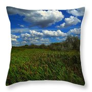 Wind In The Cattails Throw Pillow