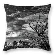 Wind Shaped Tree #2 - Patagonia Throw Pillow