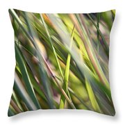 Wind Tossed - Throw Pillow