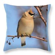 Windblown Waxwing Throw Pillow
