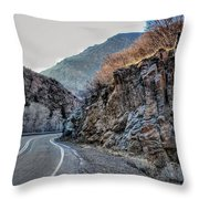 Winding Canyon Road Throw Pillow