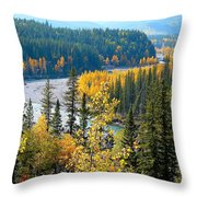 Winding Creek Throw Pillow