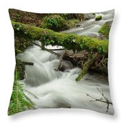 Winding Creek With A Mossy Log Throw Pillow