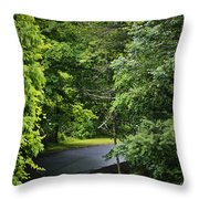Winding Road Bluestone State Park West Virginia Throw Pillow