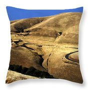 Winding Road Throw Pillow