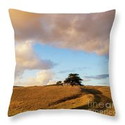 Winding Road Leads To A Lone Tree Throw Pillow