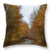 Winding Road Of Awenda Throw Pillow