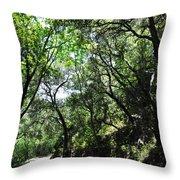 Winding Road Santa Ynez Mountains Throw Pillow