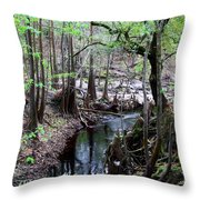 Winding Sopchoppy River Throw Pillow