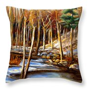 Winding Stream Throw Pillow