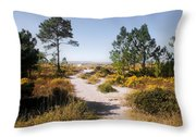 Windmark Beach Florida Throw Pillow