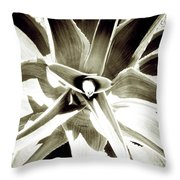 Windmill Extreme Throw Pillow