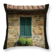 Window #3 - Cinque Terre Italy Throw Pillow