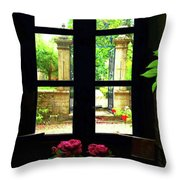 Window And Roses Throw Pillow