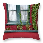 Window And Vines Throw Pillow