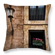 Window Box Throw Pillow