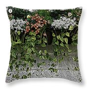 Window Box Flowers Throw Pillow