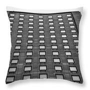 Window Boxes Throw Pillow