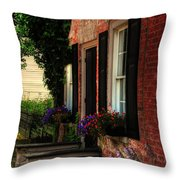Window Boxes Throw Pillow