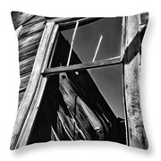 Window But No Roof Throw Pillow