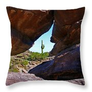 Window Cactus Throw Pillow