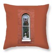 Window Dressing Throw Pillow