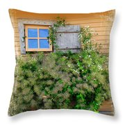 Window Floral In Plymouth Throw Pillow
