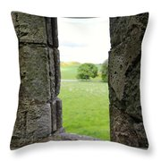 Window From The Past And Into The Future Throw Pillow