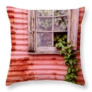 Window Of Ivy Throw Pillow