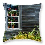 Window Of Olson House Throw Pillow