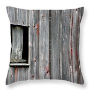 Window Of Past Times Throw Pillow