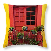 Window On Mexican House Throw Pillow by Elena Elisseeva