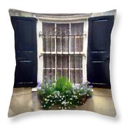 Window Shutters And Flowers II Throw Pillow