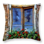Window Shutters And Flowers IIi Throw Pillow