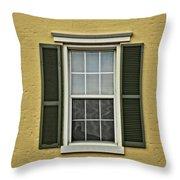 Window Style Throw Pillow