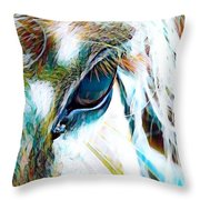 Window To The Soul 2 Throw Pillow