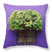 Window Treatment Throw Pillow